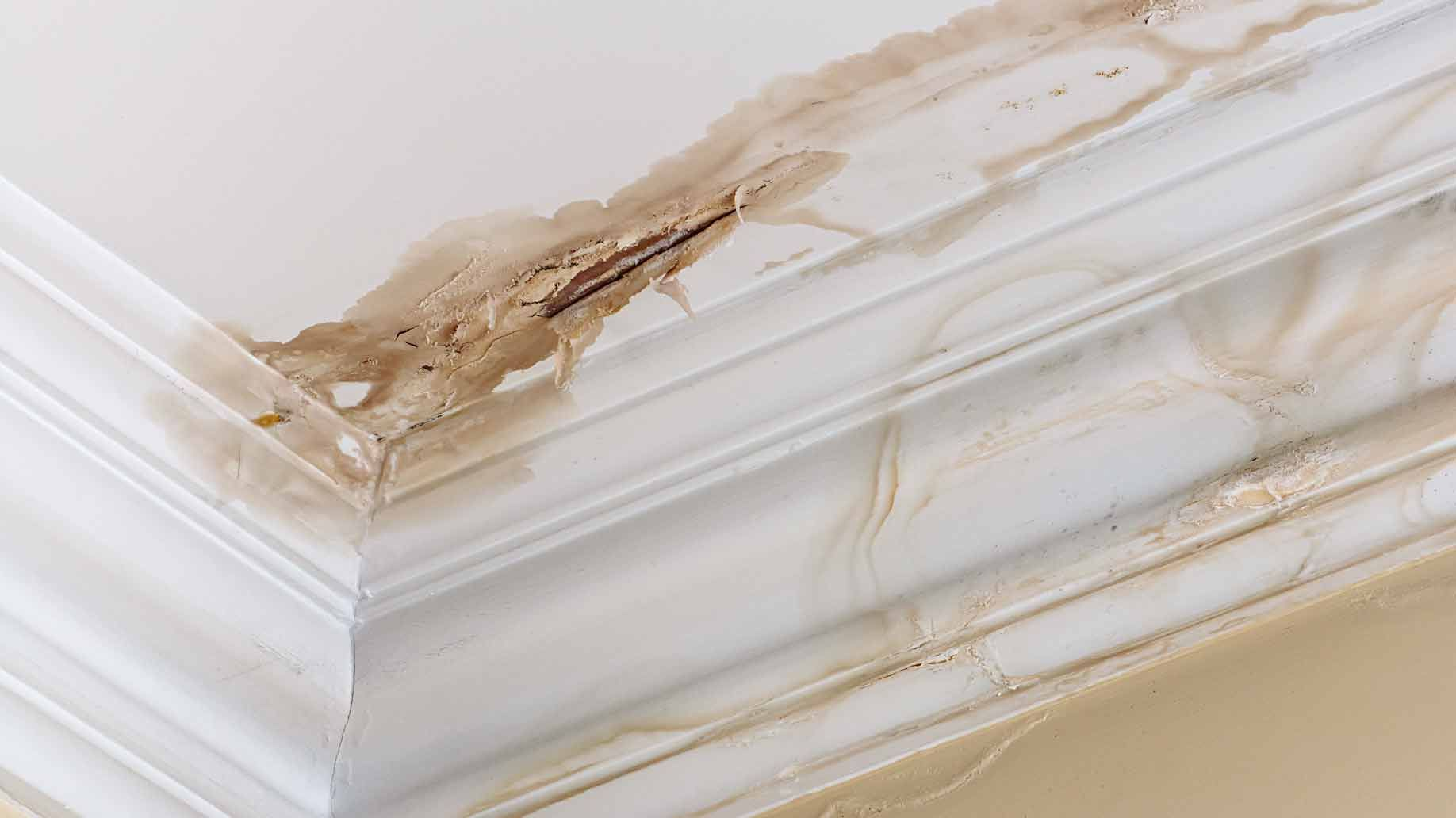 Buying An Old House Common Problems Hidden Costs Benefits Leaking Roof Roof Leak Repair Roof Repair