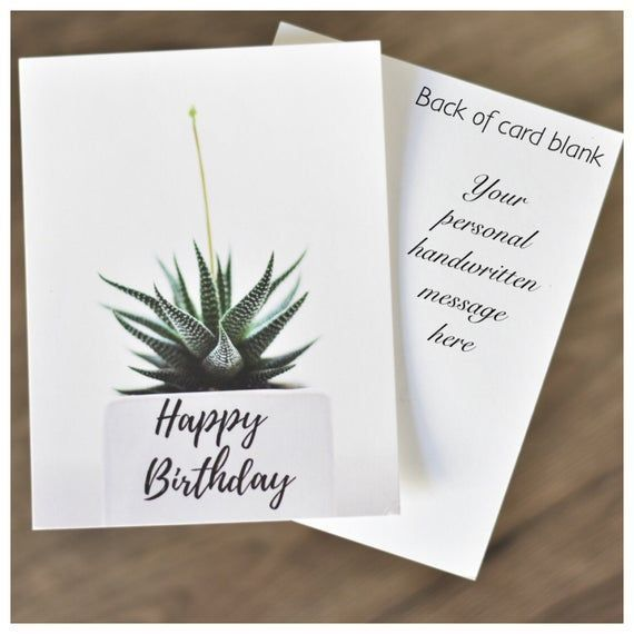 Geschenk für Büro Sukkulenten Sympathie Geschenk für Freund Geburtstag Sukkulenten Lehrer Geschenk Danke Geschenkbox Brautjungfer Geschenk Weihnachten   - Succulent Gifts -