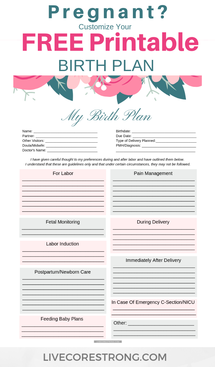 How To Make The Ultimate Birth Plan Free One Page Template Birth Plan Template Birth Plan How To Plan