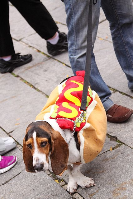 Hot-Dog by hsair, via Flickr
