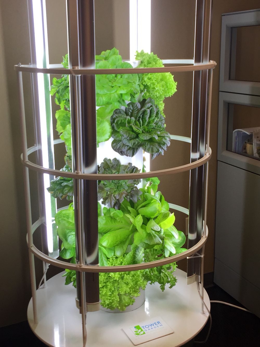 Tower Garden In The Home Office Of Juice Plus Memphis Tn Www Markgs
