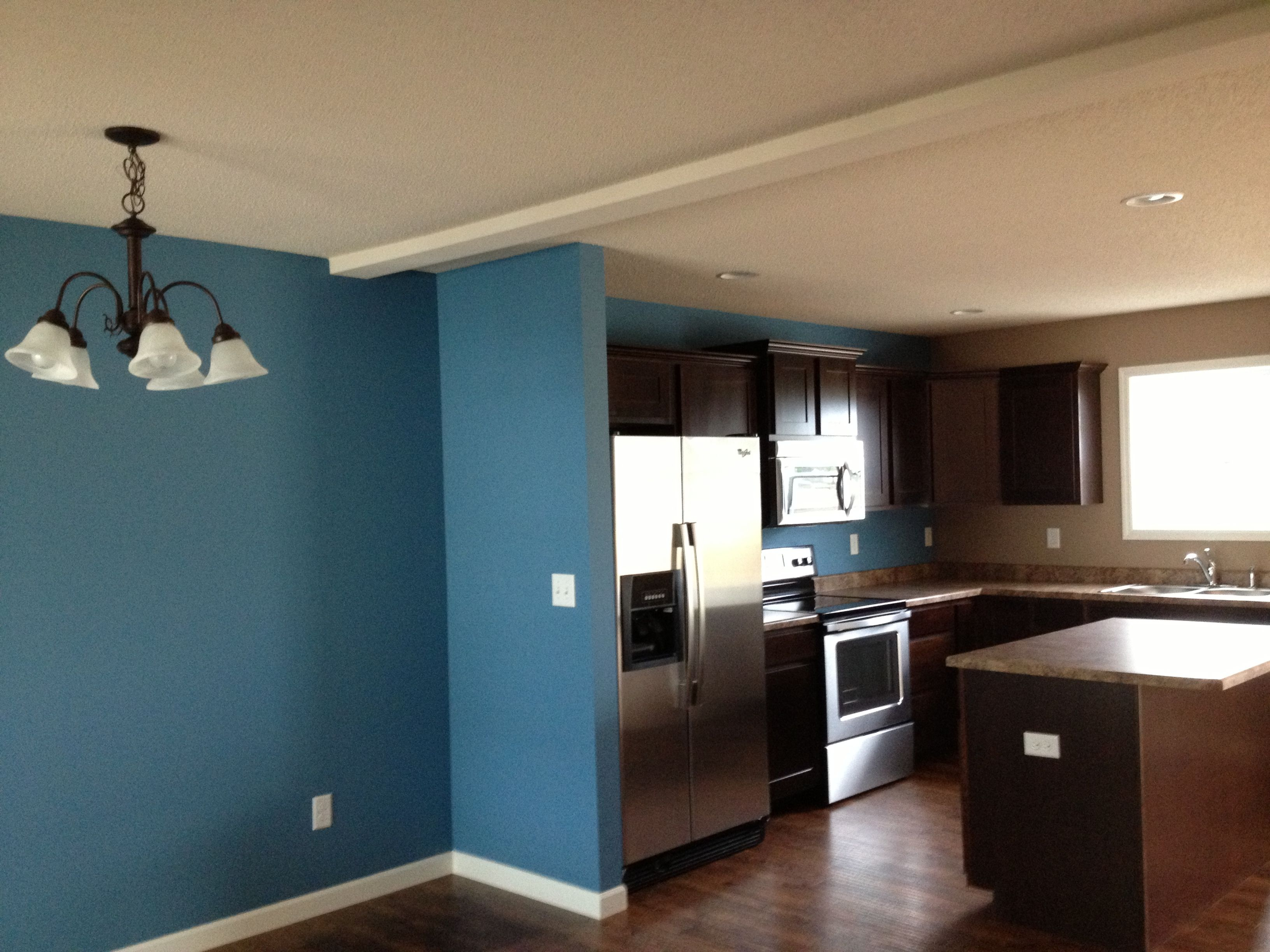 mesmerizing sherwin williams blue living room | Sherwin Williams- Secure Blue | Blue kitchen walls, Blue ...
