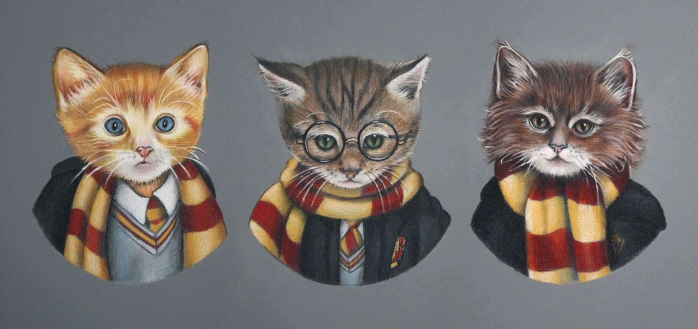 Fanimals Hermione S Cat Harry Potter Cat Harry Potter Ron And Hermione