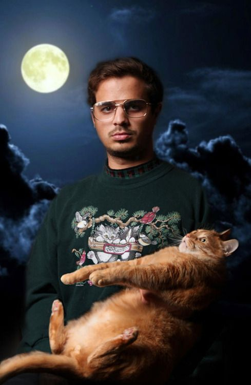 12 Amazing Cat Glamour Shots Funny People Pictures Awkward
