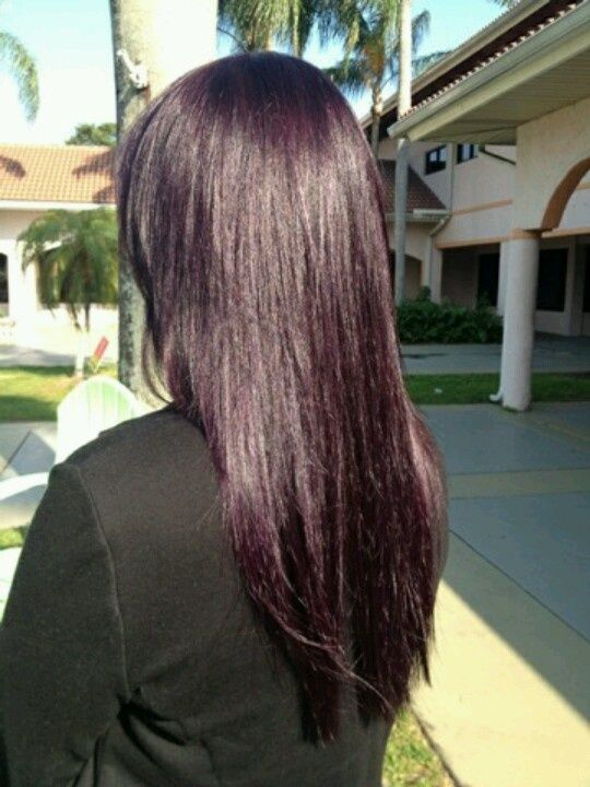 Eggplant Hair Colors Colored Coloured Color Dark