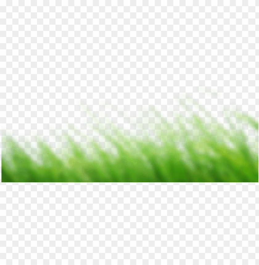 Cb Edits Grass Png Image With Transparent Background Png Free Png Images Grass Photoshop Green Background Video Black Background Images