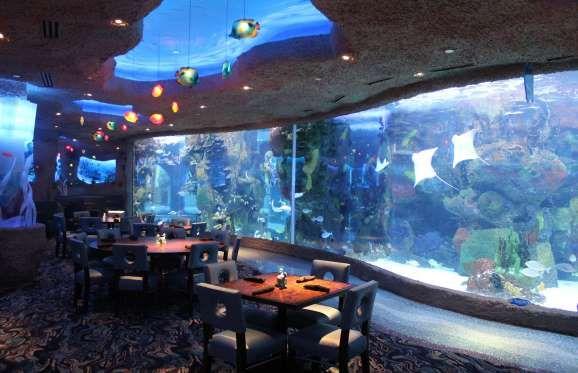 The Aquarium Restaurant Curly Has Four Locations Nashville Denver Houston And Kemah Texas Facebook
