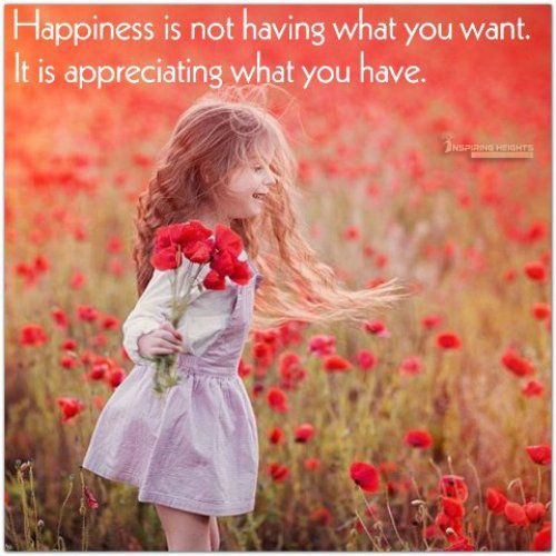 Happiness is not having what you want…