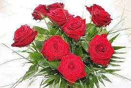 Rosas, Flores Rosa, Rosa Vermelha