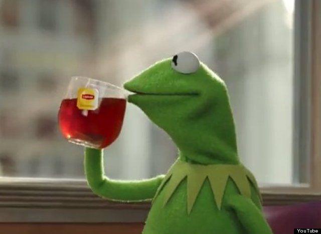 GIFBAY - Please wear your seatbelts, folks | everyone ...Kermit Drinking Photo