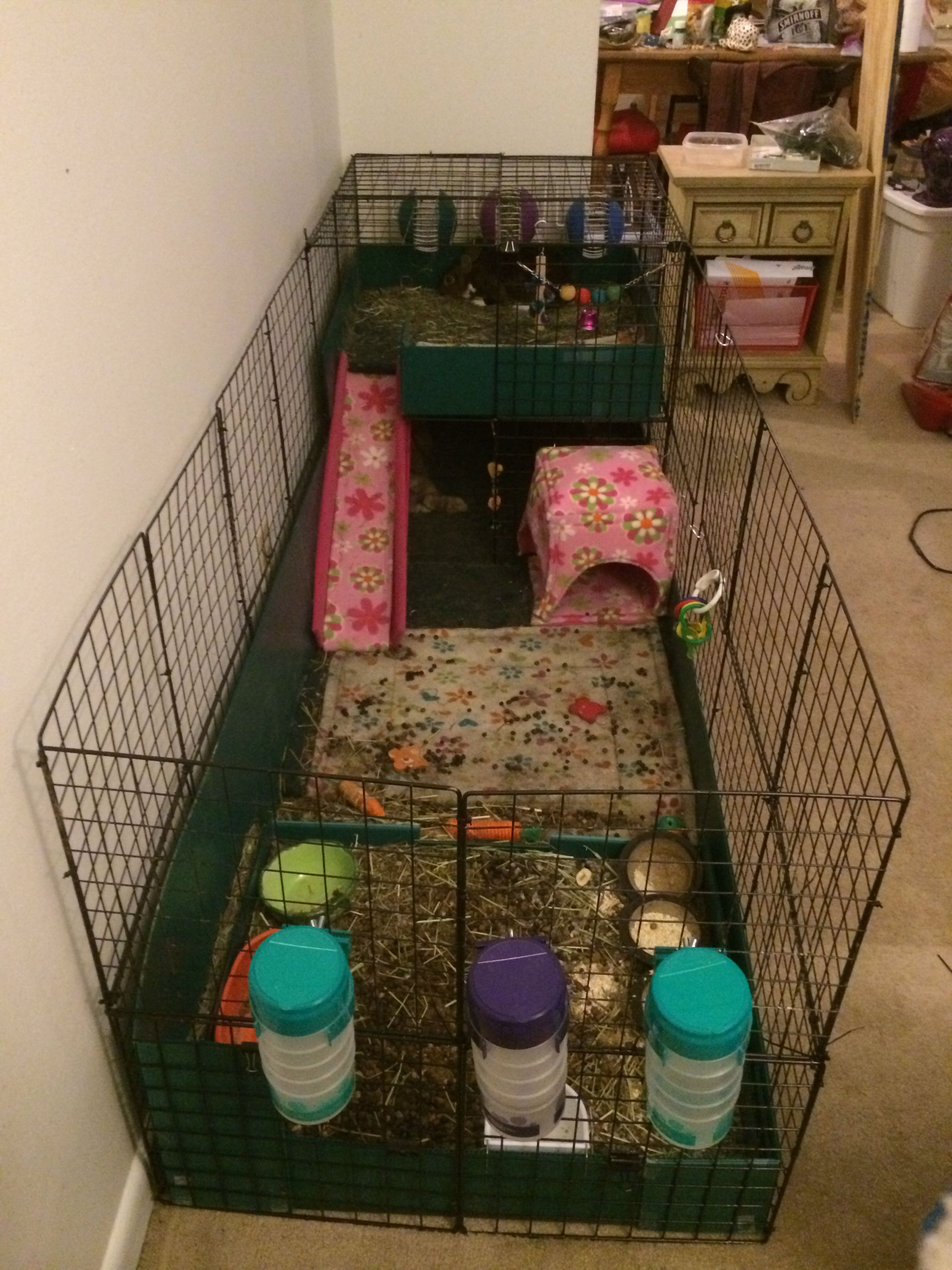 Pin By Rachel Adams On Rabbit Cage Indoor Rabbit Rabbit Cage Bunny Cages