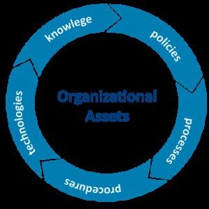 the organizational process