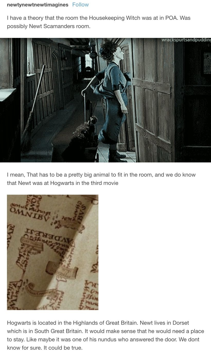 We All Know Newt Showed Up In Poa On The Marauders Map But Was He Also Present At The Leaky C Harry Potter Theories Harry Potter Universal Harry Potter Funny