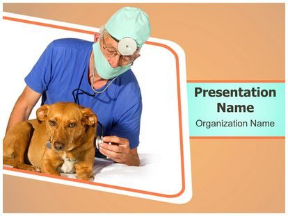 Download veterinarian powerpoint template for your upcoming download veterinarian powerpoint template for your upcoming powerpoint presentation and attract your viewers this veterinarian ppt template is easy toneelgroepblik Gallery