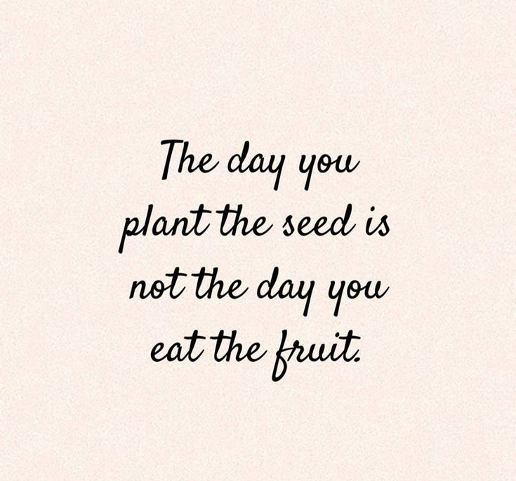 Image result for the day you plant the seed quote