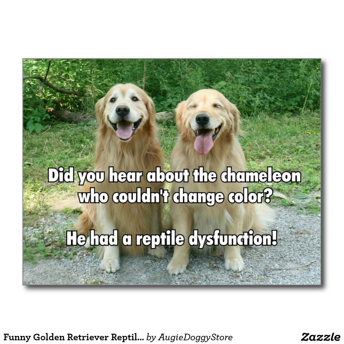 Funny Golden Retriever Reptile Dysfunction Joke Postcard Zazzle
