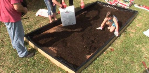 Watch this video to see how to make a raised planting bed from pressure treated wood