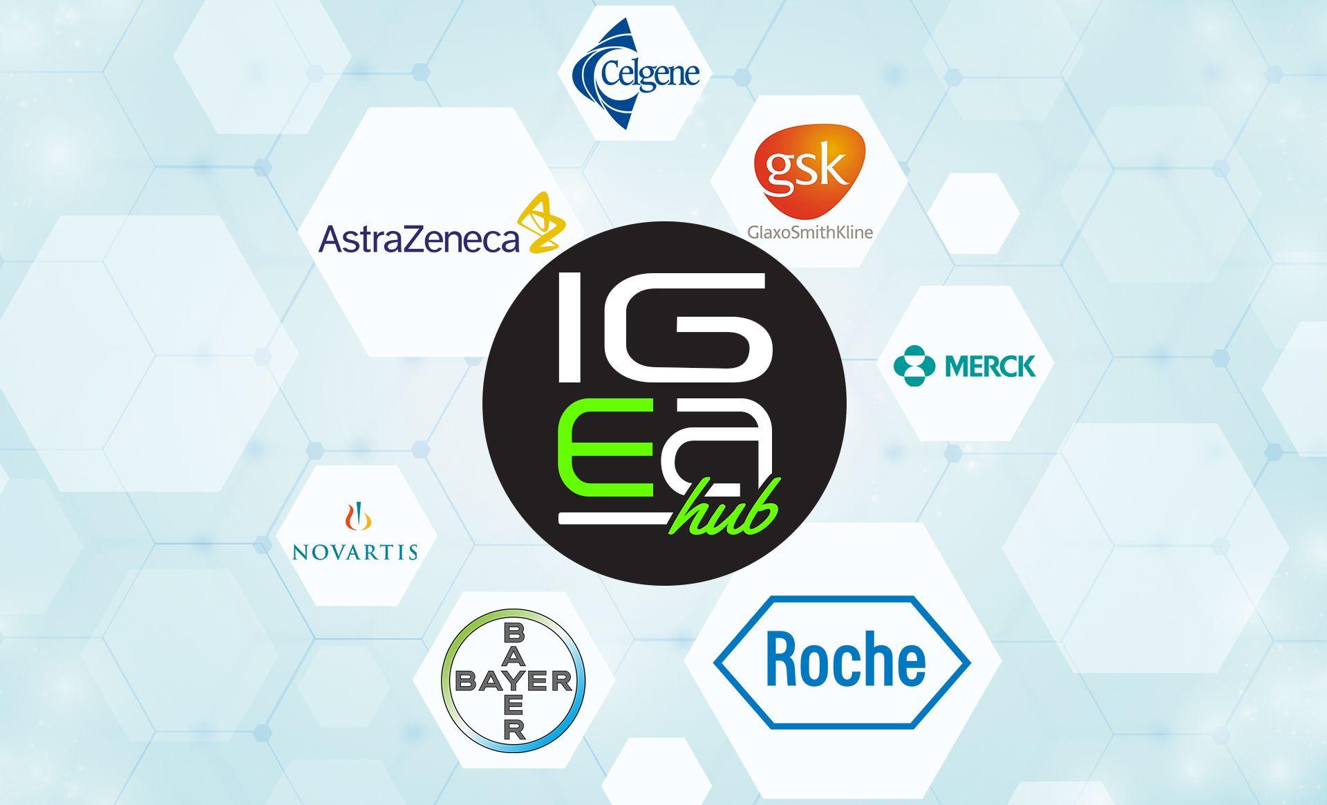 IgeaHub News Roche, Merck, Pharma
