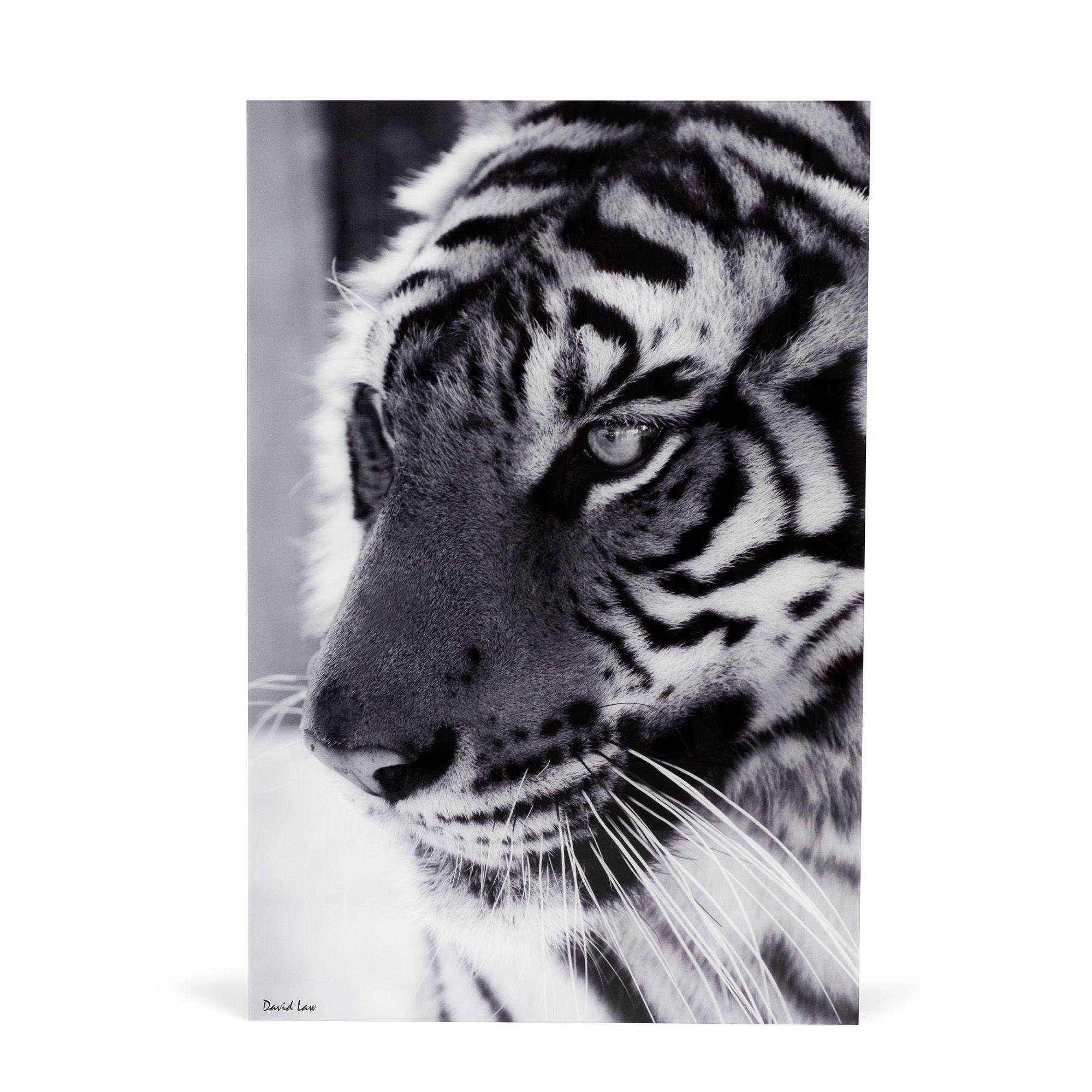 Tableau Decoplex 80x120cm En Noir Et Blanc Noir Blanc Tigre Alinea Toile Decorative Idees De Toile Noir Et Blanc