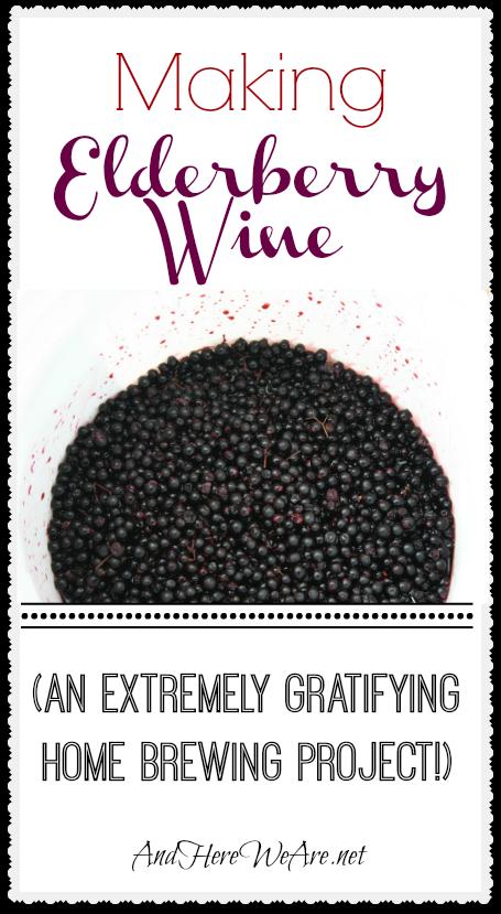 Making Elderberry Wine Brewing Pinterest Wine Homebrewing And