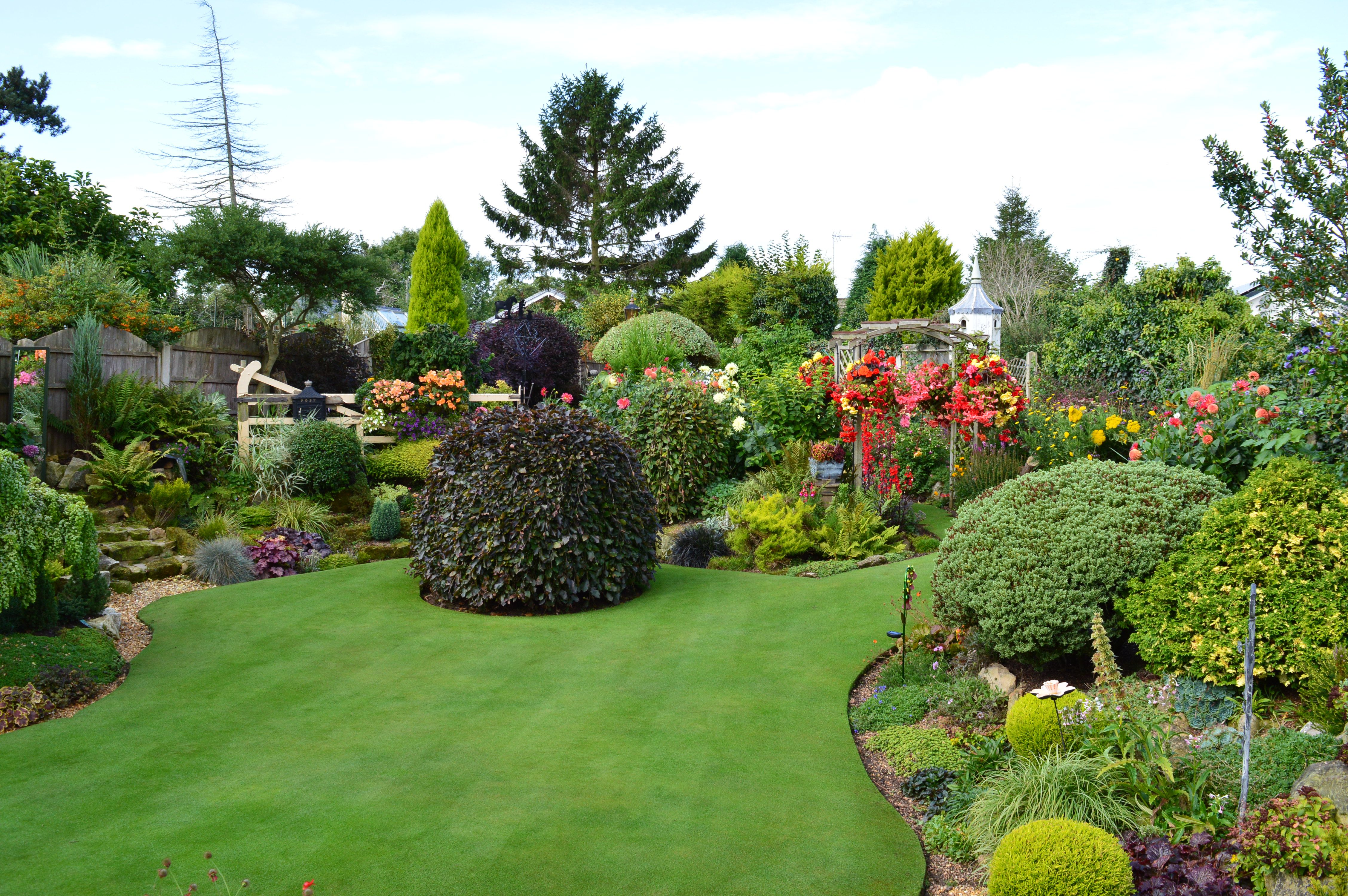 Britains best lawn with images lawn lawn care plants
