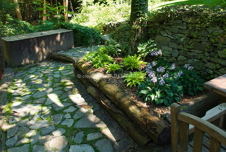 raised garden bed in shade under trees with stone patio and walls hosta sun power and another miniature hosta in bloom use of natural materials