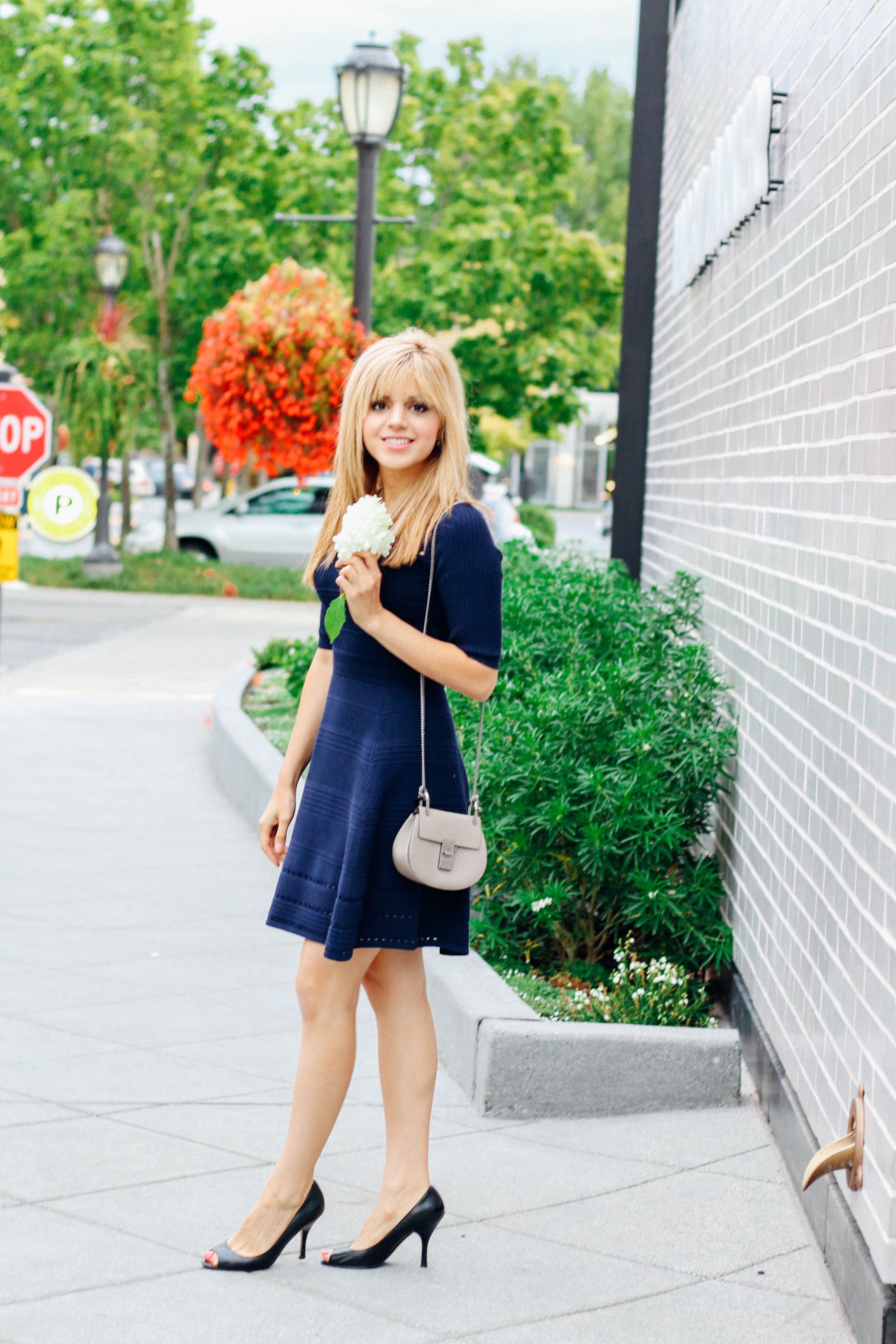 53c276988467 Navy blue is one of those colors that looks great on everyone. Amanda from  thefashiontofollow.com wears a navy blue Milly dress from Nordstrom.