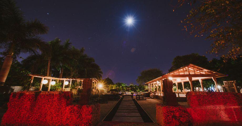 Redland koi gardens in homestead florida southern