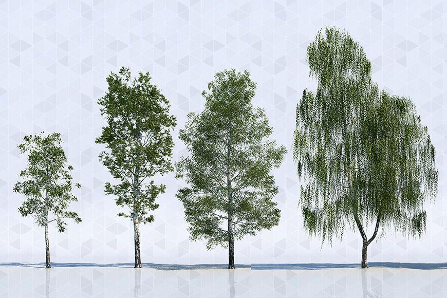39++ 2d tree information