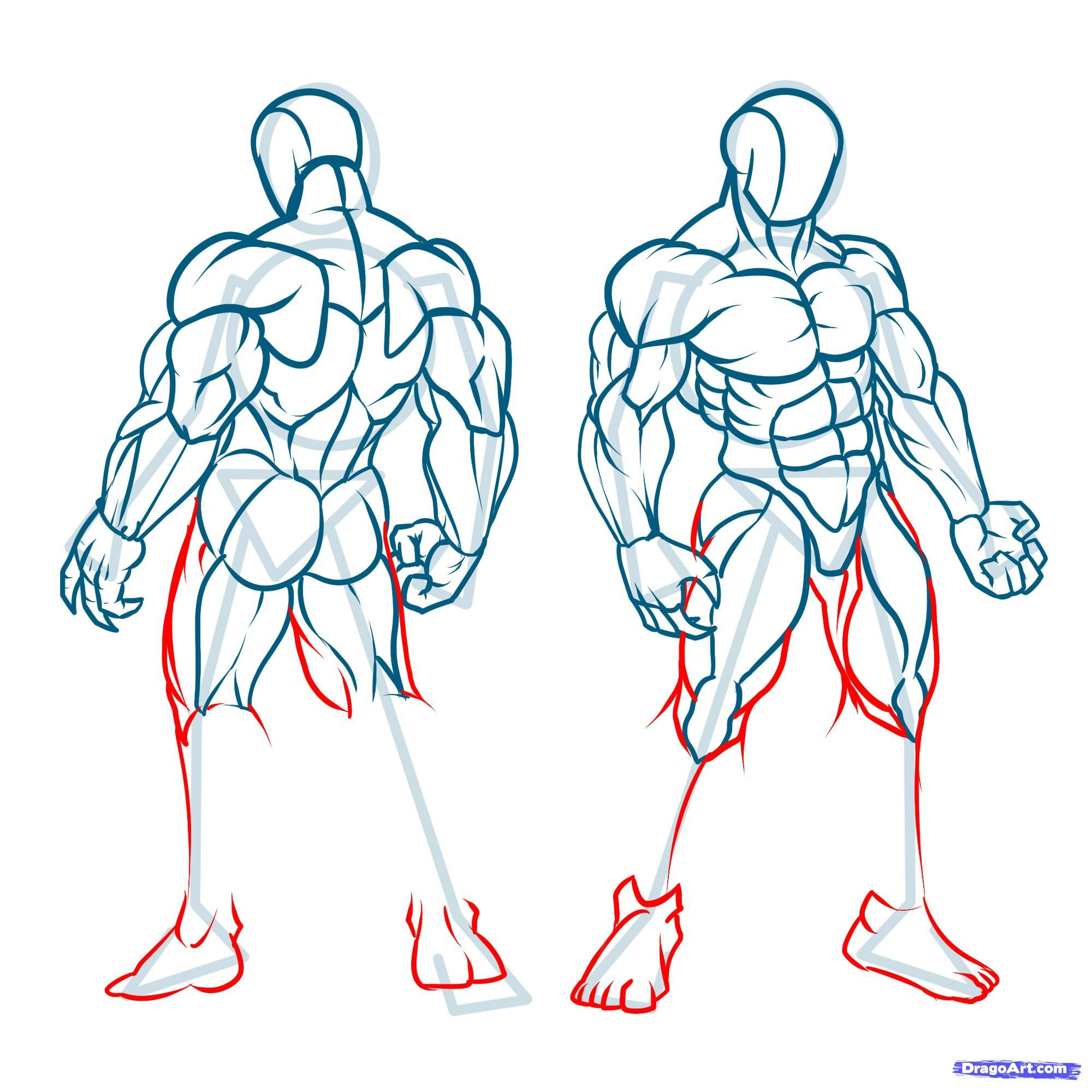 How To Draw Muscles Step 22