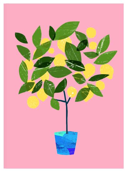 Meyer Lemon Tree / house plant illustration / Ana Zaja Petrak ...