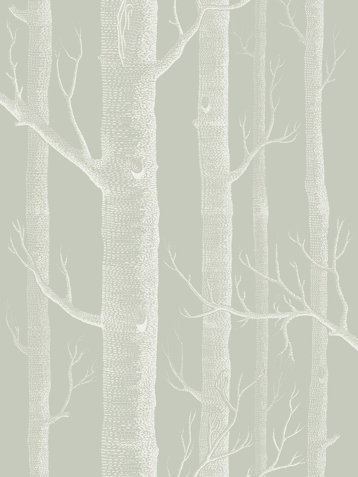 Cole Son Woods Wallpaper 112 3013 Wood Wallpaper Cole Son