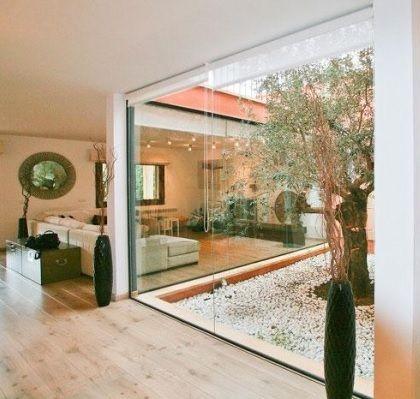 Un olivo en mi patio | living | Pinterest