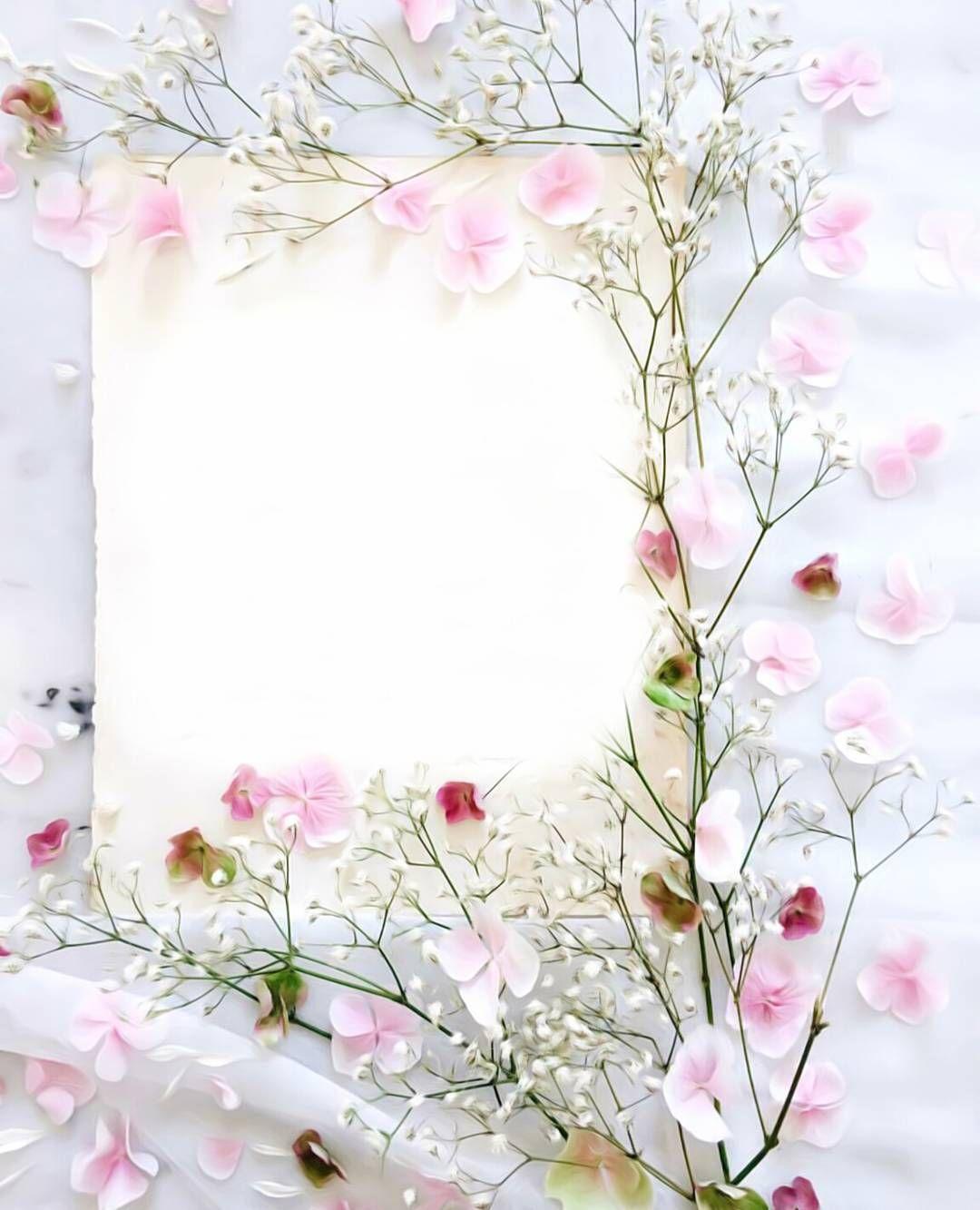 صل على الحبيب المصطفى عليه افضل الصلاة والسلام اذكر الله يذكرك اللهم ارحم والدي و اغفر ل Flower Background Wallpaper Flower Backgrounds Flower Frame