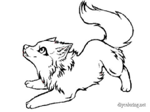 Baby Wolf Coloring Pages Draw Pinterest Baby wolves and Sketches - fresh realistic rhino coloring pages
