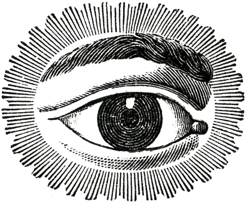 Free Public Domain Image Watching Eye S E N T I D O S Dibujos Blanco Y Negro Dibujos Y Ilustraciones