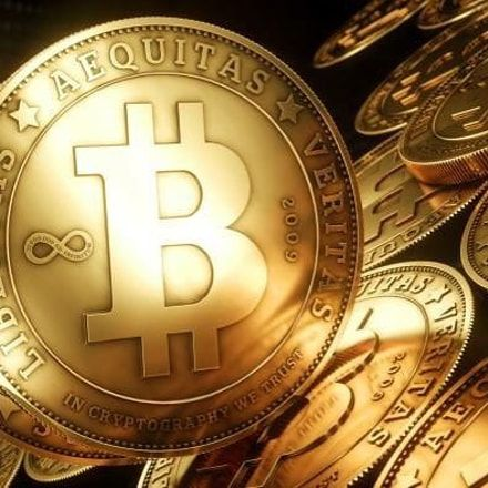 Buying bitcoins in wallets for investment