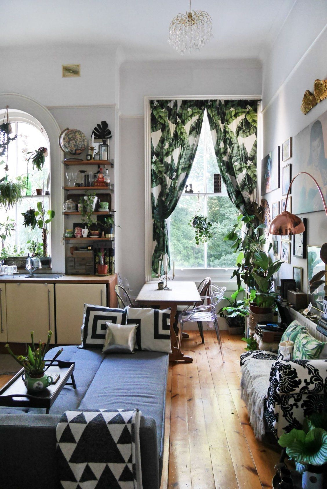Over 80 Plants Make This Small Uk Rental Feel Like A Jungle Home