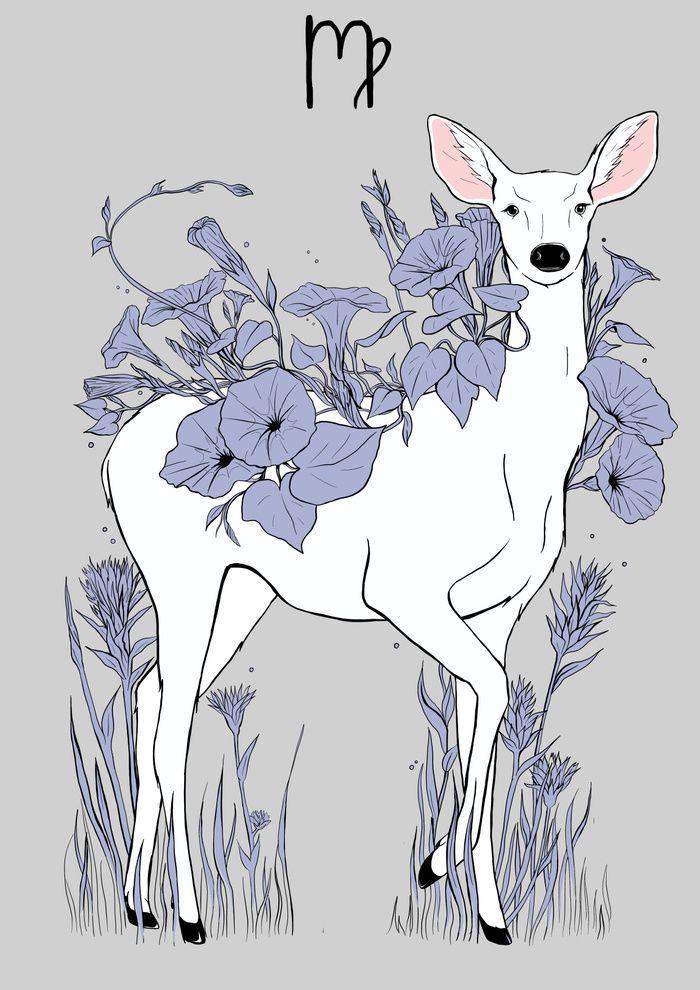Virgo spirit animal Virgo Art and Inspiration ♍ Pinterest
