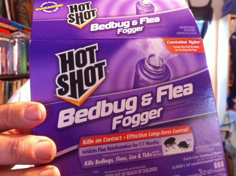 How to Bomb for Bedbugs, Fleas, Lice & Ticks (Live