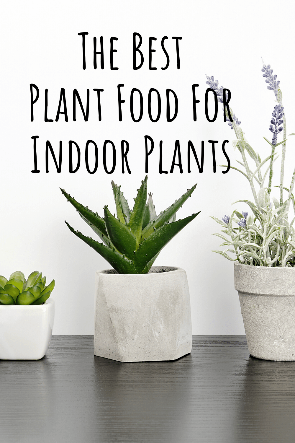 The 10 Best Plant Food For Indoor Plants In 2020 Organic Plant Food Plant Food Plants