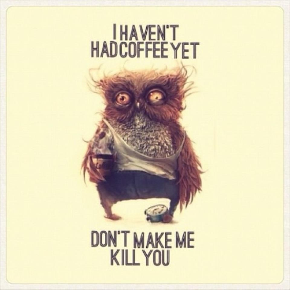 Image result for I haven't had my coffee yet. Don't make