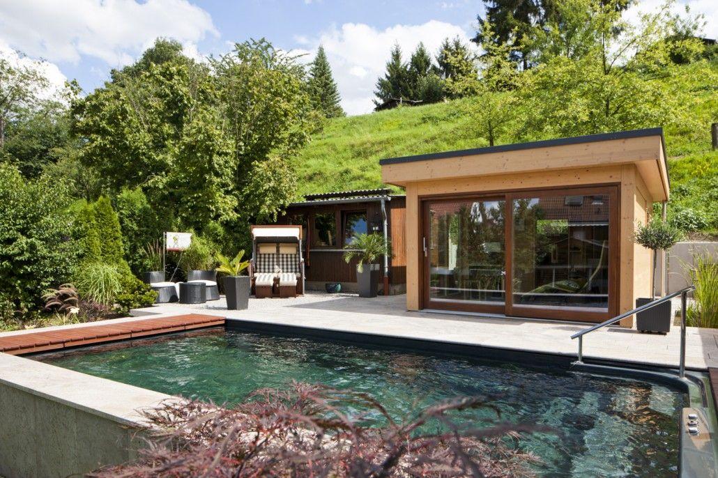 naturpool-oder-schwimmteich-mit-biologischer-natuerlicher ...