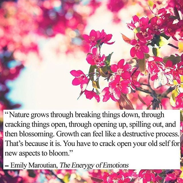 """""""What the caterpillar calls the end, the butterfly calls the beginning."""" - #Growth #Self #Transformation #Life"""