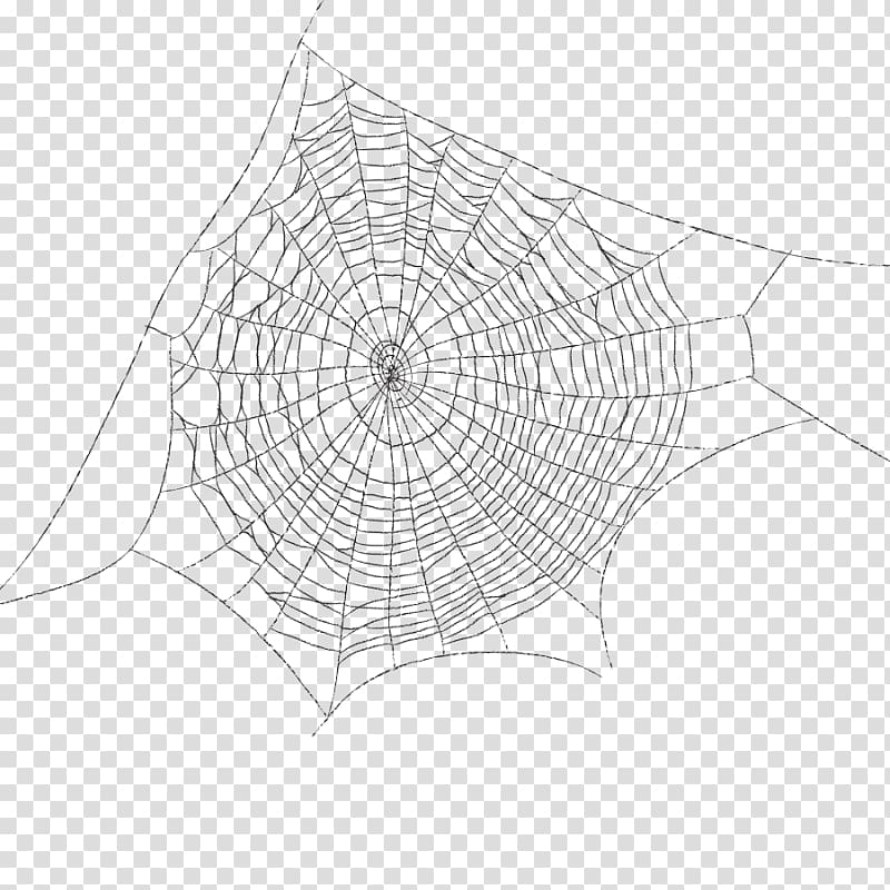 Spider Web Spider Transparent Background Png Clipart Spider Drawing Mandala Coloring Books Clip Art
