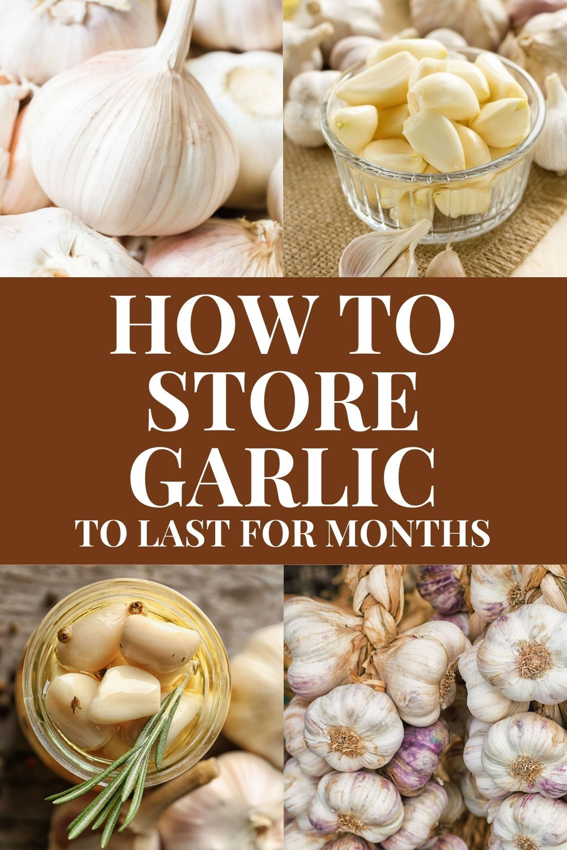 How to Store Garlic For a Long Time in 2020 How to store