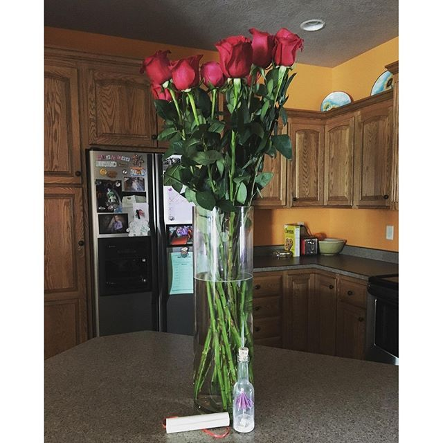 World S Tallest Roses Image Via Krazykatladee On Instagram Theultimaterose Com Theultimaterose Rose Delivery Colorful Roses Rose