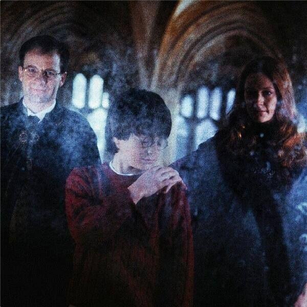 Harry Potter y la Piedra Filosofal - Espejo de Oesed