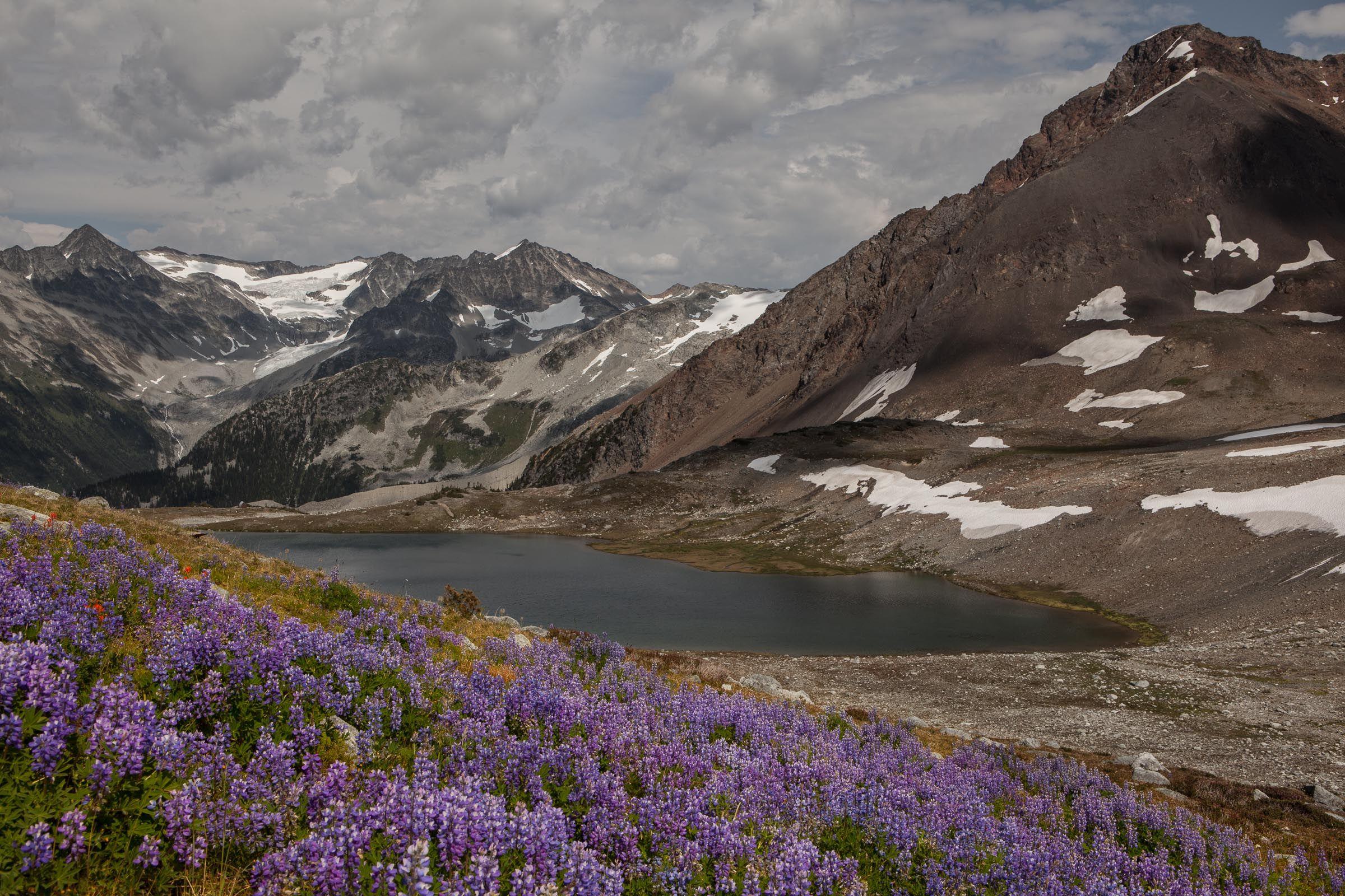Garibaldi Range Hikes