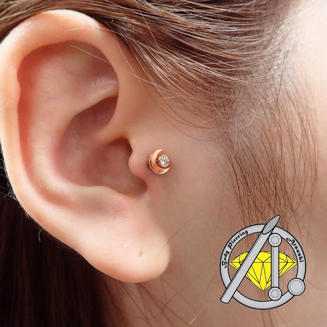 Belly button piercing keloid  Fresh Tragus Piercing with ANATOMETAL Karat Solid YELLOW GOLD
